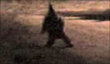 gnome-terror.jpg