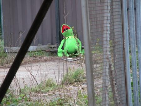 Kermit abandonné