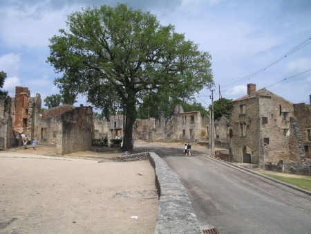 Un arbre d'Oradour-sur-Glane