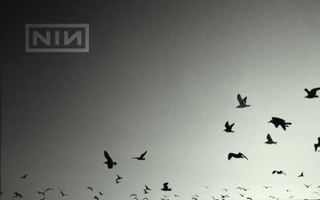 reznor-ghosts-2.jpg