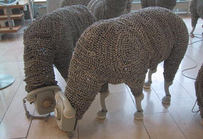 http://www.lilela.net/wp-content/uploads/telephone-sheep.jpg